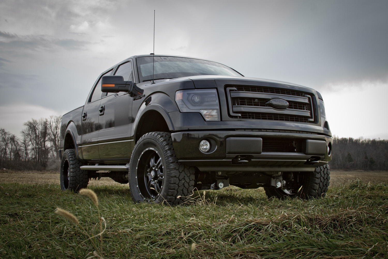 bds suspension new product release 161 2014 ford f150 4 lift kits. Black Bedroom Furniture Sets. Home Design Ideas